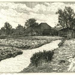 Frans Room - ets - webwinkel Zaansgroen - West-Graftdijk