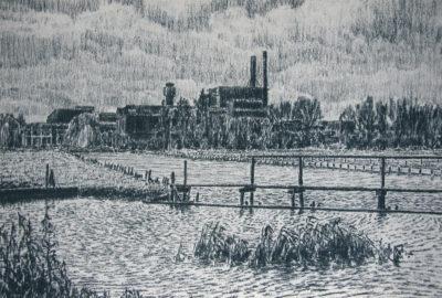 frans room - papierfabriek van gelder - wormer - zeefdruk - zaansgroen