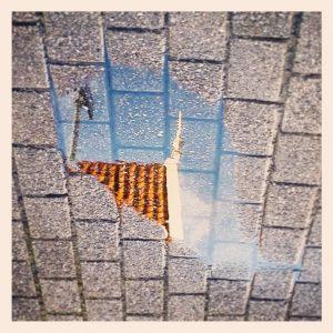 ML0010-zaans dak - instagram- fotografie van Marjolein Lensink - fotografie - Zaansgroen