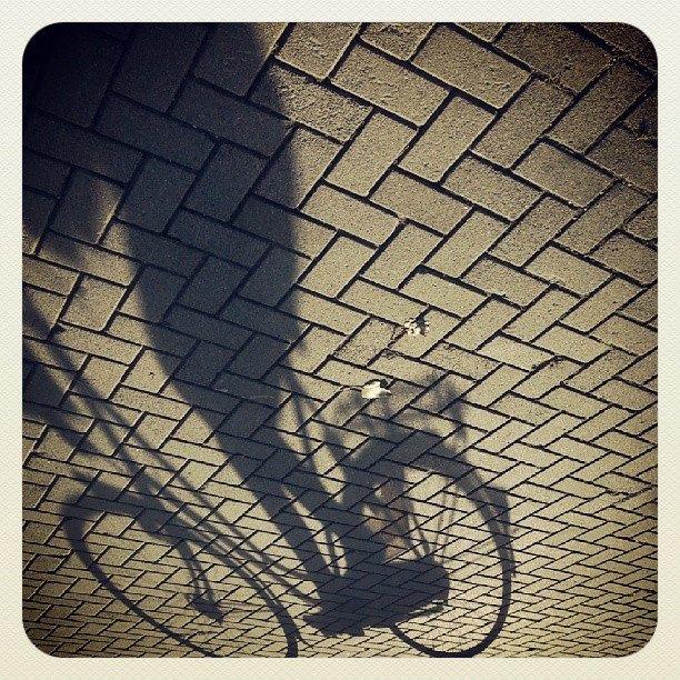 ML0033-schaduw-fiets - instagram- fotografie van Marjolein Lensink - fotografie - Zaansgroen