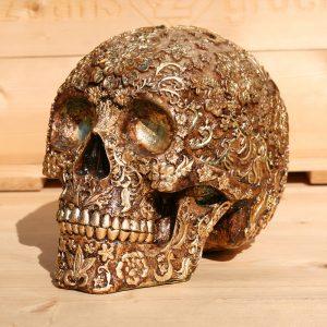 david-rachman-schedel
