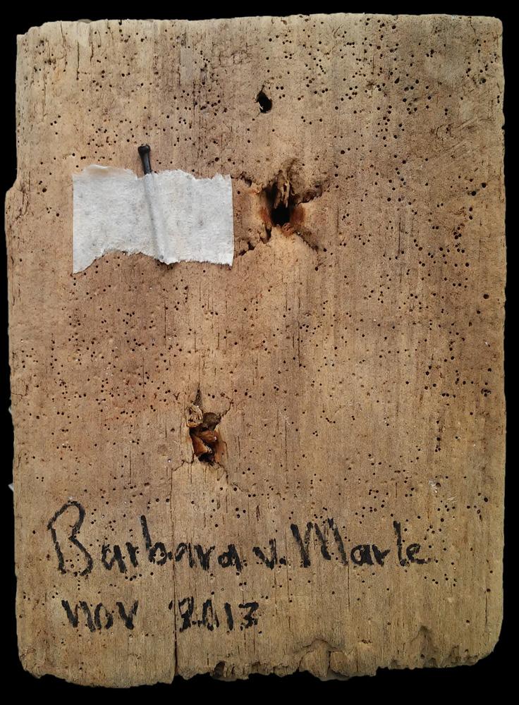 barbara van marle - mini - www.kunstwerken.shop - acryl op drijfhout
