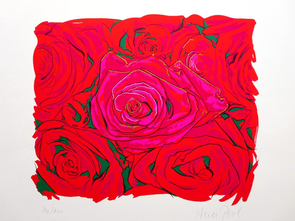 alice-pool-rozen te koop bij Zaansgroen