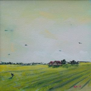 Raapzaadveld - Kinga Wieczorek