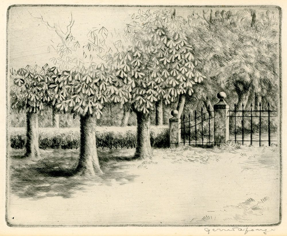 Gerrit de Jong bomen