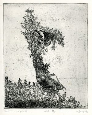 gevangen vogel 2 hans kuyt 19456