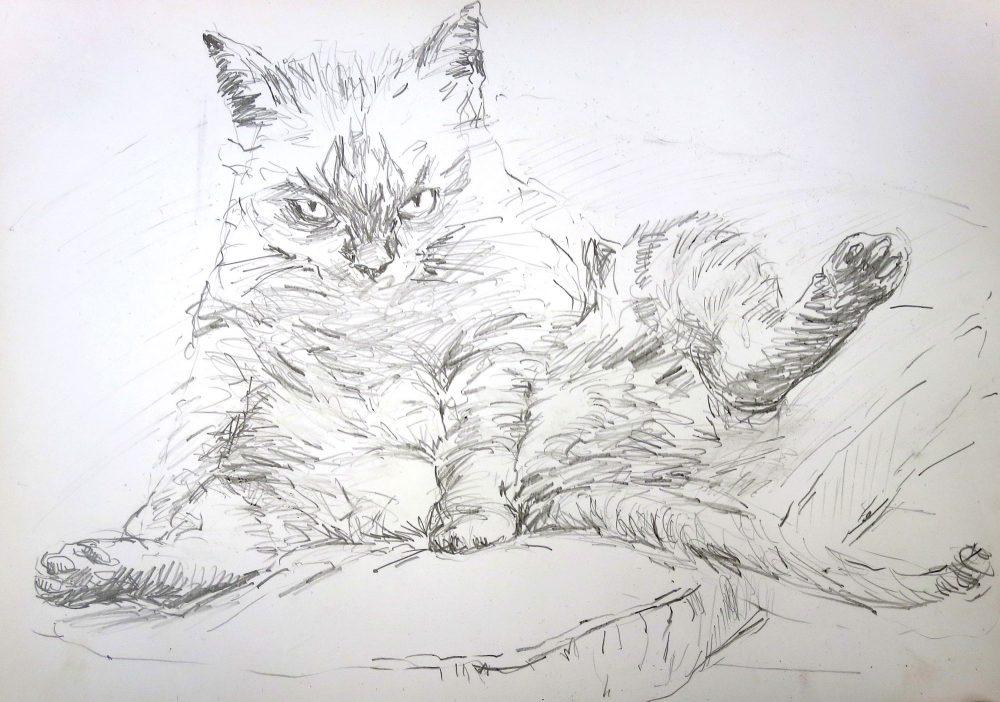 Joost van der Krogt tekening