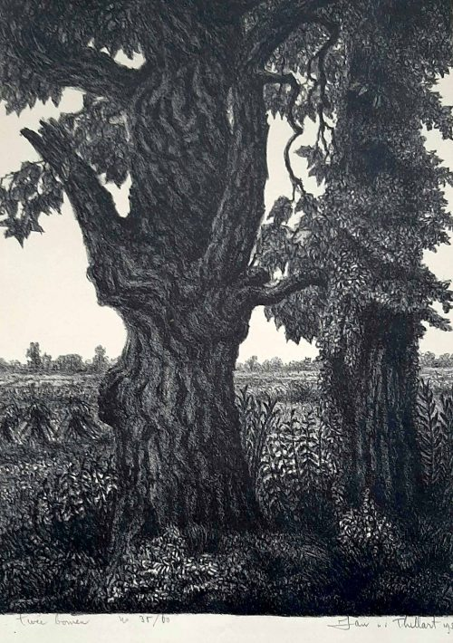 jan-van-den-thillart