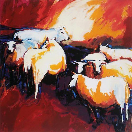 gerda-elfring-schapen